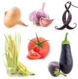Собрание овощей стоковая фотография rf