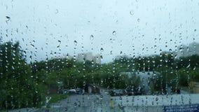 собрание падает окно дождя природы Стоковые Фото