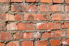 Собрание предпосылок - кирпичная стена Стоковые Фото