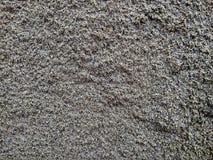 Собрание предпосылок - толстый слой цемента на том основании стоковая фотография rf