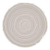 Собрание предпосылки дерев-колец Стоковое Фото