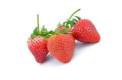 Собрание плодоовощей клубники различное форменного Стоковые Фотографии RF