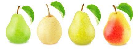 Собрание различных плодоовощей груши Стоковая Фотография