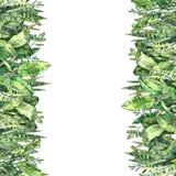 Собрание растительности акварели Рука покрасила вертикальный шаблон предпосылки в экологическом стиле иллюстрация штока