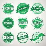 Собрание ретро винтажных зеленых био ярлыков дизайна экологичности Иллюстрация штока