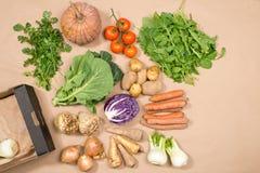 Собрание свежих овощей и космоса экземпляра коробки Стоковое Фото
