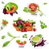 Собрание свежих овощей стоковое изображение rf