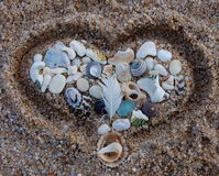Собрание сердца форменное раковин Стоковая Фотография