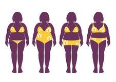 Собрание силуэтов тучной женщины в купальных костюмах, иллюстрациях вектора Стоковое Изображение RF