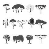 Собрание стилизованных силуэтов деревьев иллюстрация штока