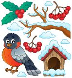Собрание 1 темы птицы зимы иллюстрация вектора