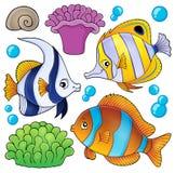 Собрание 3 темы рыб кораллового рифа иллюстрация штока