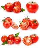 Собрание томатов изолированных на белой предпосылке Стоковые Изображения