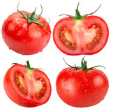 Собрание томатов изолированных на белой предпосылке Стоковая Фотография