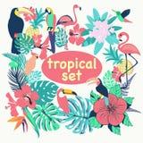 Собрание тропических птиц, листьев ладони и цветков Стоковые Изображения RF