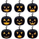Собрание тыкв черноты хеллоуина Стоковое Фото