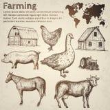 Собрание фермы также вектор иллюстрации притяжки corel Стоковая Фотография RF