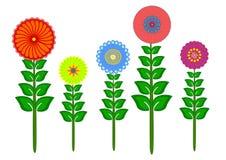 Собрание цветка ретро Стоковое фото RF