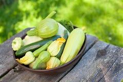 Собрание цукини и и овощей сердцевины стоковая фотография