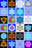 собрание шелушится снежок Стоковые Изображения RF