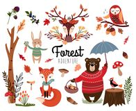 Собрание элемента леса с осенней предпосылкой, рукой нарисованные сезонные детали изолированные на белизне бесплатная иллюстрация
