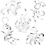 Собрание элементов флористического орнамента изолированное на белизне иллюстрация вектора