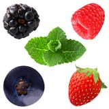 собрание ягод с мятой solated на белизне Стоковое Изображение
