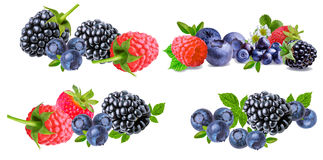 Собрание ягоды изолированное на белизне Стоковые Изображения