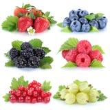 Собрание ягоды красной смородины голубик клубник ягод стоковая фотография