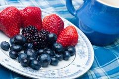 собрание ягод Стоковые Изображения
