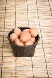 Собрание яичка в корзине Стоковое фото RF