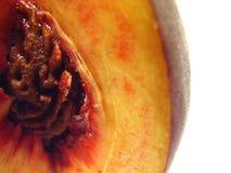 Собрание 9 персика Стоковые Фотографии RF