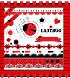 Собрание Ladybug Стоковая Фотография