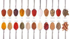 собрание spices ложки Стоковое Изображение RF