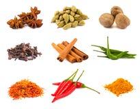 собрание spices различное Стоковая Фотография