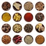 собрание spices xxxl Стоковое Изображение RF