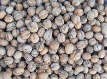 Собранная текстура грецких орехов стоковая фотография rf