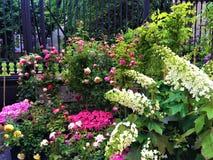 Событие FLOR в городе Турина, Италии Цветки, цвета, красота и весна стоковые фото