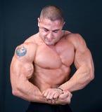 Совершенная мышечная мыжская модель стоковая фотография rf