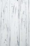 Совершенная текстура белой древесины Стоковые Фото