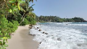 Совершенное лето Шри-Ланка Slowmotion 4k акции видеоматериалы