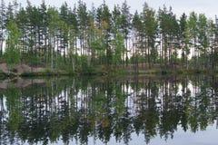 Совершенное отражение деревьев в воде с другой стороны озера леса, затишья Стоковая Фотография RF