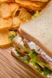 Совершенные сандвич и обломоки сочетания из Стоковая Фотография RF