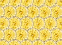 Совершенные строки зрелых желтых кусков лимона и грейпфрута Стоковые Фотографии RF