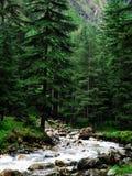 Совершенный пейзаж Стоковое Фото