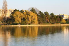 Совершенный солнечный день Совершенное время для прогулки в парке Стоковая Фотография RF