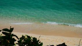 Совершенный тропический пляж UHD сток-видео