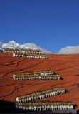 совершители lijiang впечатления Стоковое Фото