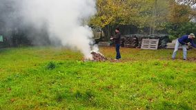 Совместная работа человека и женщины на собирая и горя листьях умерших видеоматериал