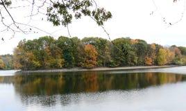 совмещать созданное различное изображение 3 hdr листва падения выдержек Стоковая Фотография RF